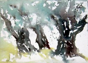 aquarell, watercolor, olivenbaum, olivenbäume, olive tree, olive trees, olivenhain, toskana, tuscany