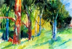 aquarell, watercolor, aquarelle, acquerello, rot, red, rouge, rosso, föhre, pine, pin, pino silvestre, wald, forest, bois, bosco, foresta, selva, bäume, trees, arbres, albero, árbol,