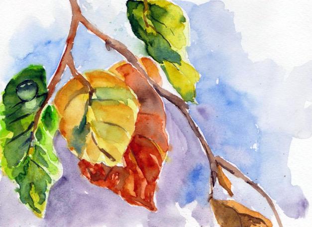 aquarell, watercolor, aquarelle, acquerello, acuarela, blätter, leaves, feuilles, foglie, follaje, wassertropfen, waterdrop, gouttes d'eau, gocce d'acqua, gotas de agua,